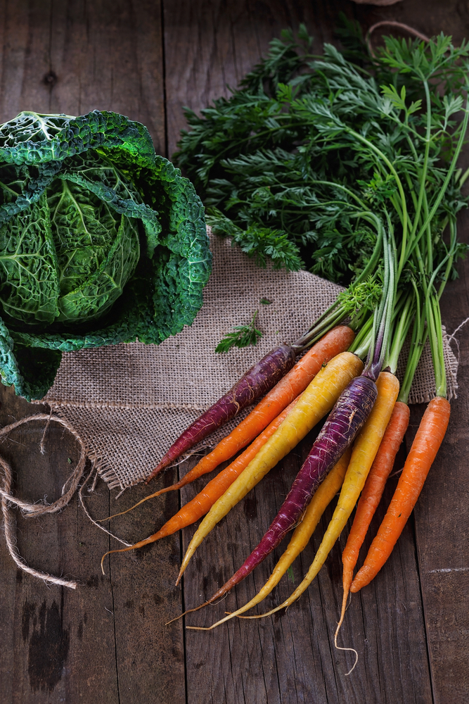 Savoy cabbage and colored carrots over rustic wooden background