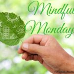 Mindful Mondays – Letting Go of the Need for Approval