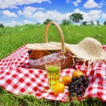 Picnic Essentials for the Clean Eater